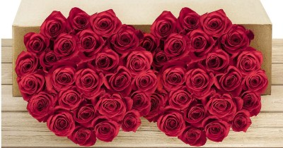 FIFTY Roses Only $49.99 Shipped | Free Delivery For Valentine's Day
