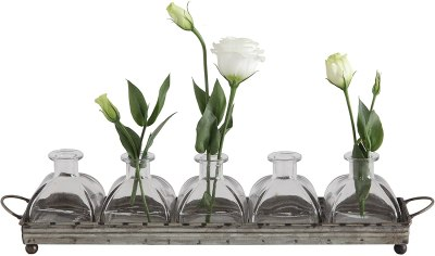 AMAZON: Creative Co-op Decorative Iron Rectangle Tray with Handles & 5 Glass Vases Only $22.60 (Reg. $39)