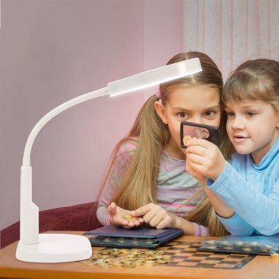 AMAZON: Salmue 5X Magnifier Lamp 12x LED USB Desk Lamp – DISCOUNTED AT CHECKOUT!