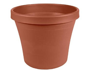Amazon: Plastic Pot Planter 6″ Terra Cotta for $1.99 (Reg. Price $7.99)