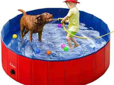 Amazon: Save 60% on Portable Foldable Pool Dogs Cats Bathing Tub