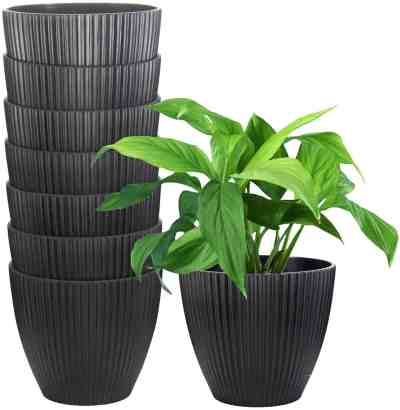 Amazon: Plastic Pots 6 Inch, 8 Pack for $6.35 (Reg. Price $15.88) after code!