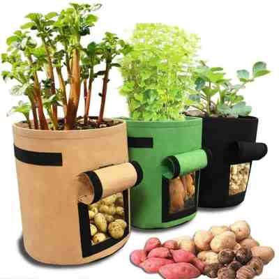 Amazon: Potato Grow Bag 4 Gallon Garden Planting Bag, 50% off after code!