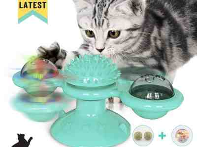 Amazon: Cat Toys for Indoor for Only $6.05 (Reg. Price $10.99)