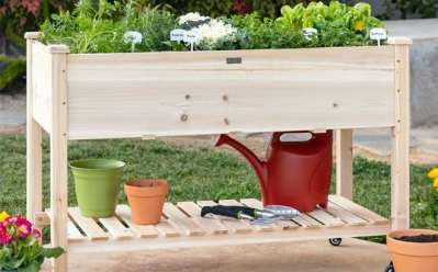 BCP: Mobile Raised Garden Bed Elevated Wood Planter ONLY $99 +FREE Shipping (Reg $200)