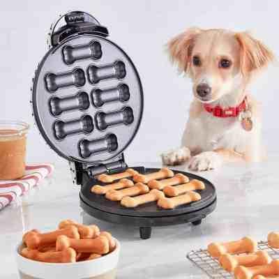 Kohl's: Dash Dog Treat Maker For $19.99 (Reg $39.99)