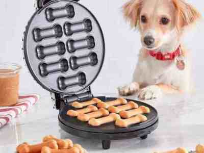 Kohl's: Dash Dog Treat Maker For $19.99 At (Reg.$39.99)