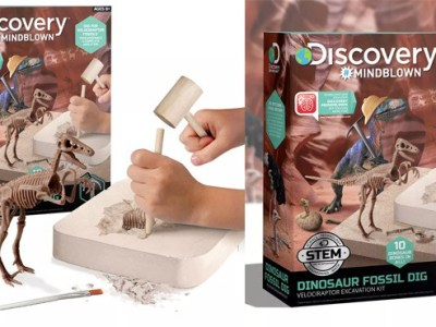 Kohl's: Discovery Fossil Dig T-Rex Excavation Kit ONLY $10.49 (Reg $15)