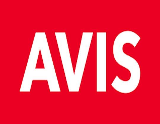 Avis Discount Code