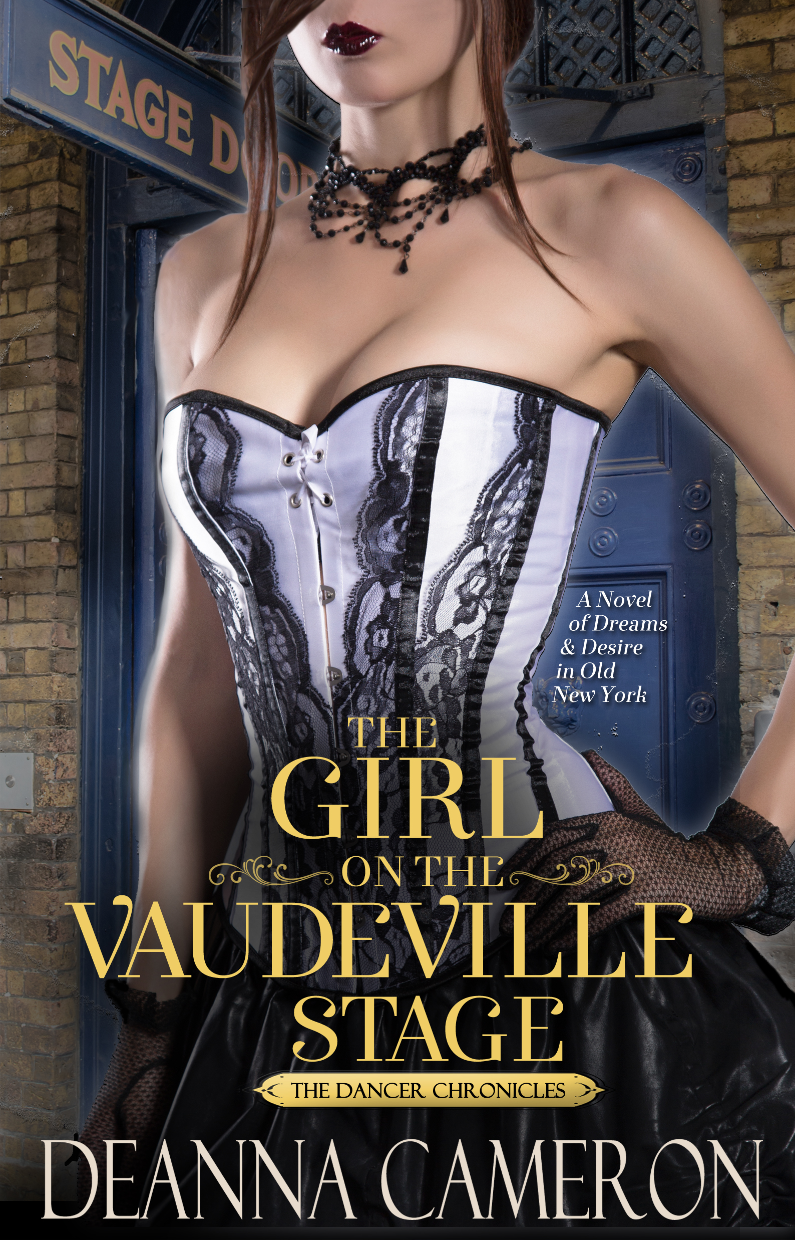 The Girl on the Vaudeville Stage book cover