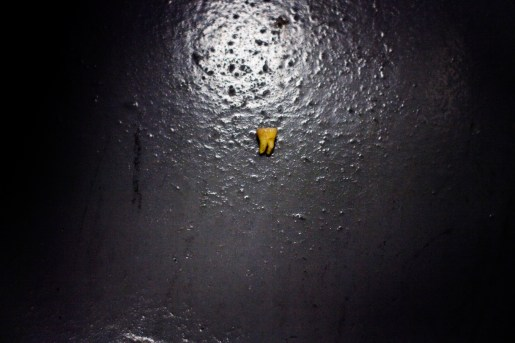 A tooth sits on the floor of a border patrol detention room in Southern Florida.