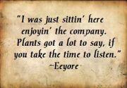 Eeyore Quote