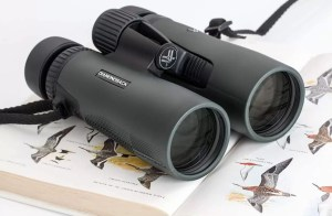 fixing binoculars at home
