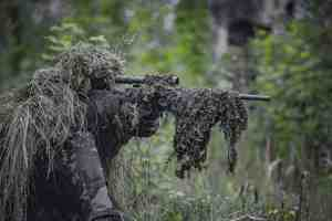 top Bushnell riflescopes reviews