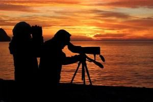 top Bushnell spotting scopes for hunting