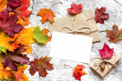 秋のプレゼントならこれ!季節感あるギフトにおすすめの秋グッズ15選
