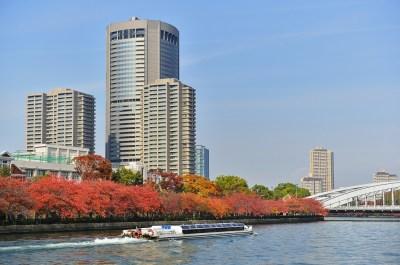 桜ノ宮デートでランチするならここ!記念日ランチもバッチリな予約推奨レストランランキングTOP5/大阪府デートガイド