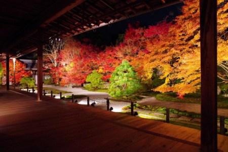 南禅寺周辺デートでディナーするならここ!記念日ディナーもバッチリ&予約推奨レストランランキングTOP11