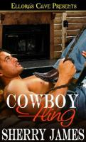 cowboyfling_msr2.jpg