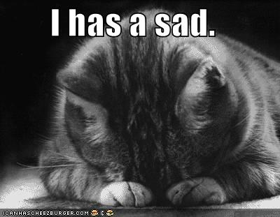 http://icanhascheezburger.com/2008/01/18/funny-pictures-i-has-a-sad/