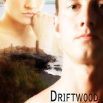Driftwood by Harper Fox