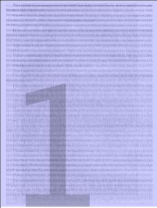 purple Briss screen