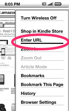 Kindle experimental web