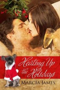 Heating up the Holidays by Marcia James