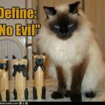 funny-pictures-define-no-evil