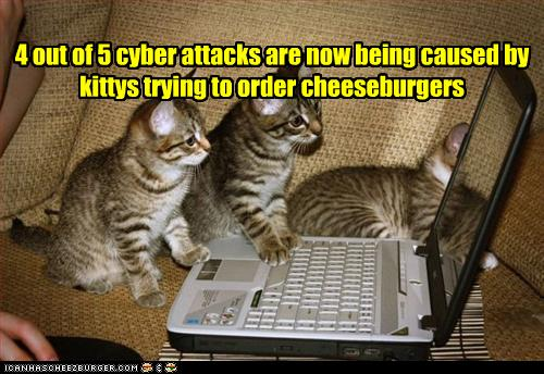 The reader author paradigm funny pictures kittens try to order burgers spiritdancerdesigns Images