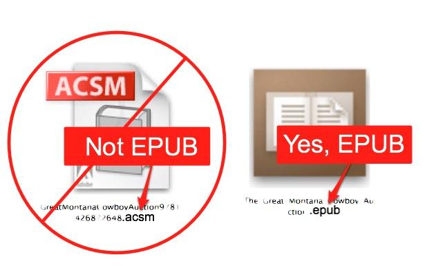 Ebook download acsm