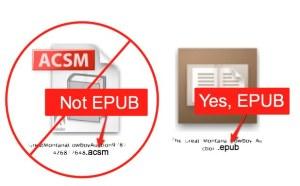 ACSM EPUB
