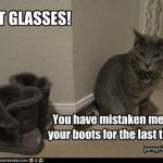 funny-pictures-cat-looks-like-boots