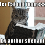 Cat not impressed by author shenanigans