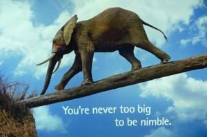 Being Nimble