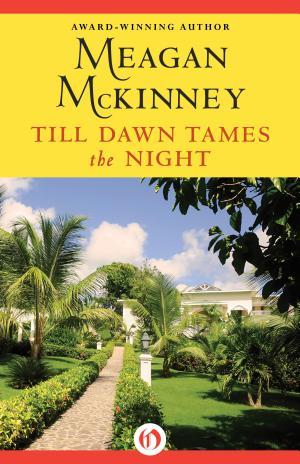 Till Dawn Tames the Night Meagan McKinney