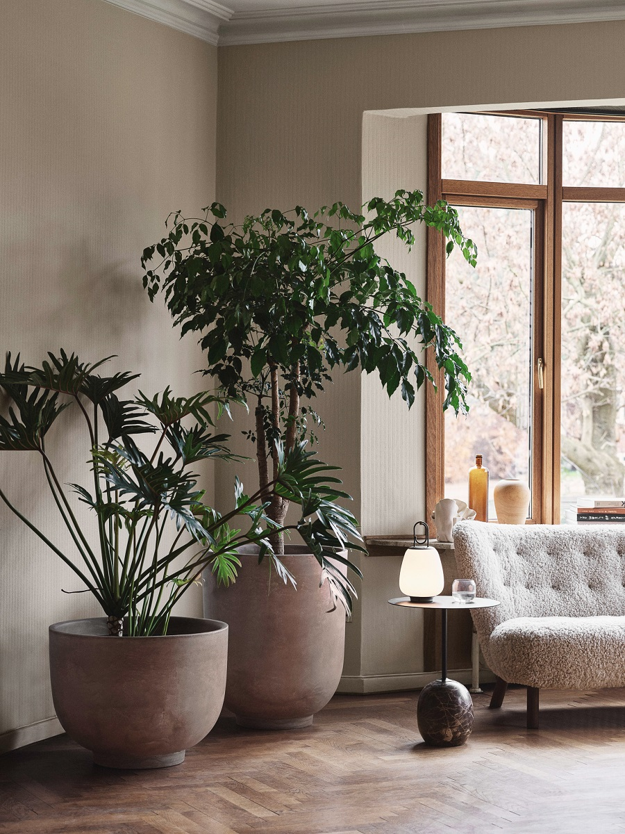 Decorating With Large Indoor Plants Dear Designer