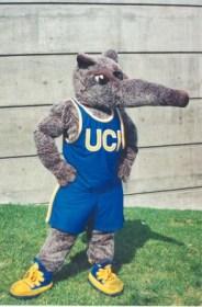 peter-anteater-university-of-irvine-college-mascot