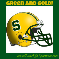sycamore-football-helmet