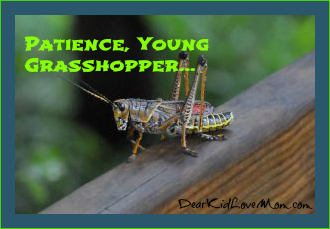 Patience Young grasshopper DearKidLoveMom.com
