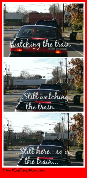trains in Cincinnati are long and boring. DearKidLoveMom.com