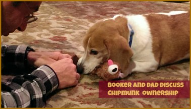 Booker and Dad discuss Chipmunk ownership DearKidLoveMom.com