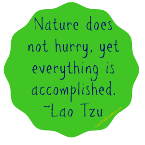 Nature does not hurry, yet everything is accomplished Lao Tzu DearKidLoveMom.com