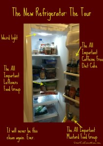 The New Refrigerator Arrives -- The Great Refrigerator Saga Part III DearKidLoveMom.com