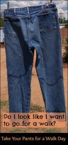 Take Your Pants for a Walk Day. DearKidLoveMom.com
