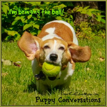 Puppy running with the ball. Puppy Conversations #PuppyConversations DearKidLoveMom.com