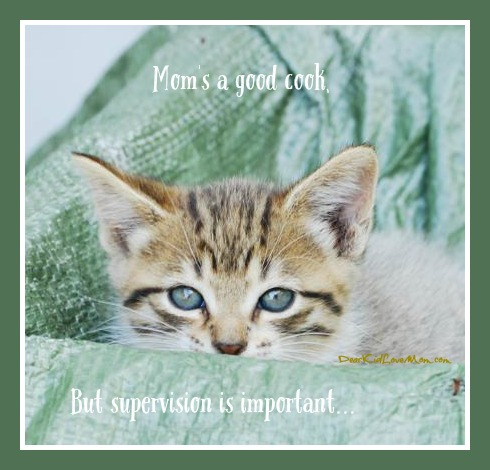 Kitten Observations. Mom's a good cook, but supervision is important. DearKidLoveMom.com