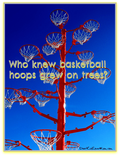 Who knew basketball hoops grew on trees? DearKidLoveMom.com