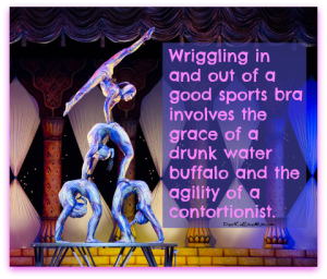 Wriggling in and out of a good sports bra involves the grace of a drunk water buffalo and the agility of a contortionist. DearKidLoveMom.com