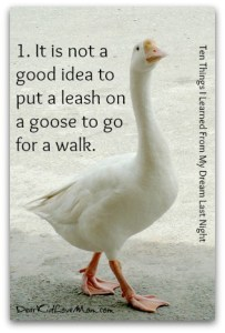 1. It is not a good idea to put a leash on a goose to go for a walk. Ten Things I Learned From My Dream Last Night. DearKidLoveMom.com